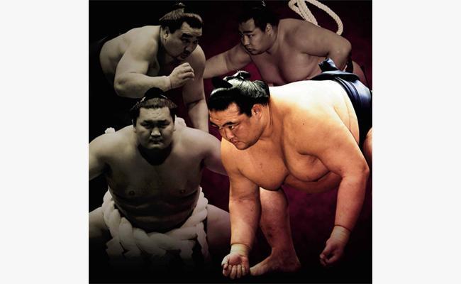大相撲 札幌場所 (特別追加席)